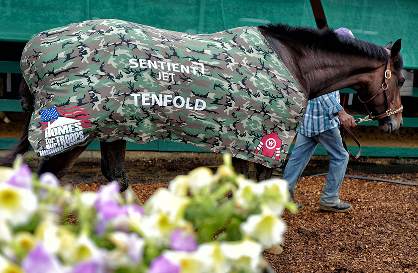 Belmont Stakes Contender Tenfold Running to Make Veterans' Dreams Come True