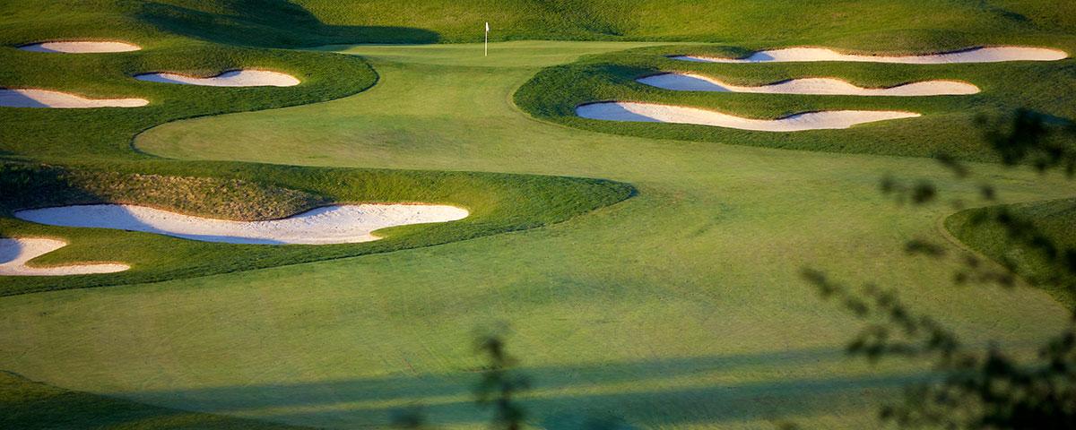 green scene of a golf court