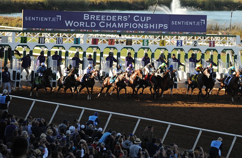 Sentient Jet Continues as Official Private Jet Partner of the 2018 Breeders' Cup World Championships