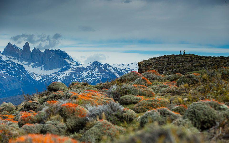 TORRES DEL PAINE NATIONAL PARK Patagonia Blog