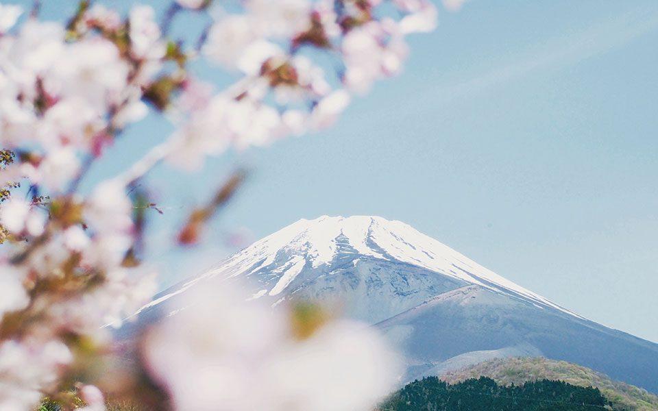 Blog Travel 3 Japan