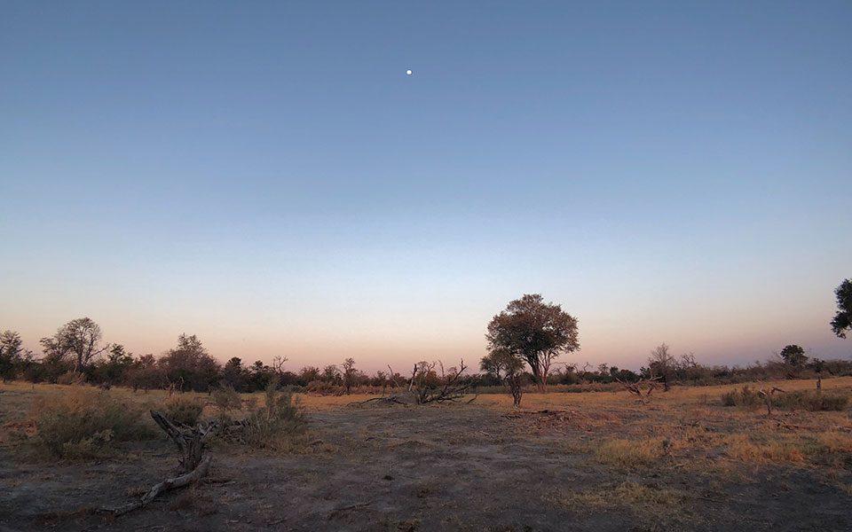 Blog Travel 3 Botswana