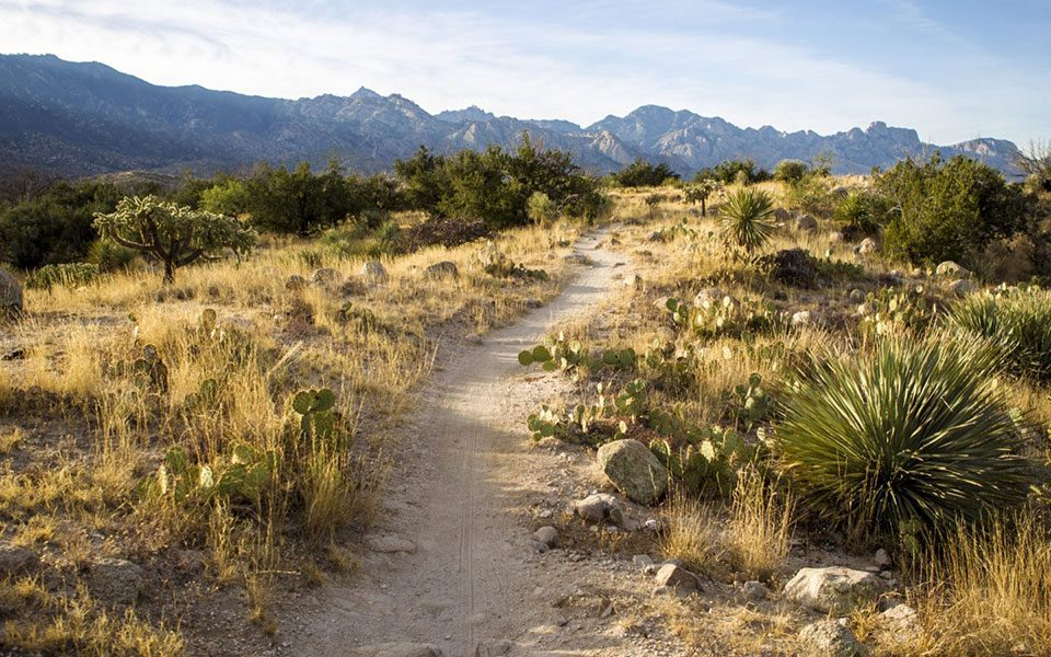 NYE Blog Tucson 2 Miraval Arizon